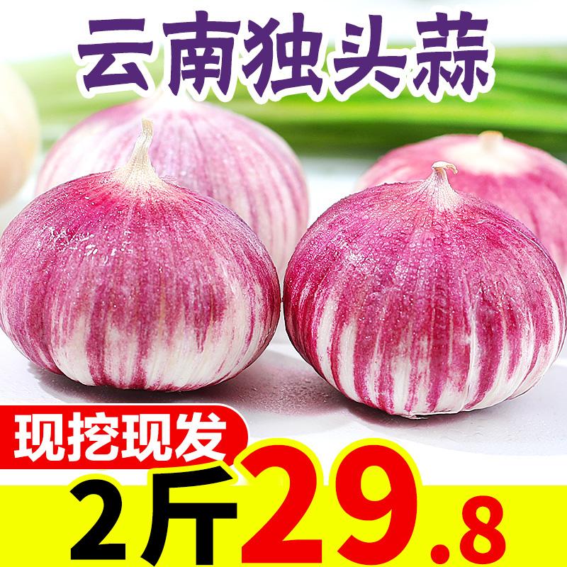 云南大理紫皮独头蒜2斤 新鲜大蒜农家蔬菜蒜头现挖干蒜批发包邮