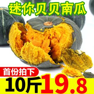 宝宝辅食 甜蔬菜整箱 贝贝南瓜板栗味小南瓜10斤新鲜当季 包邮