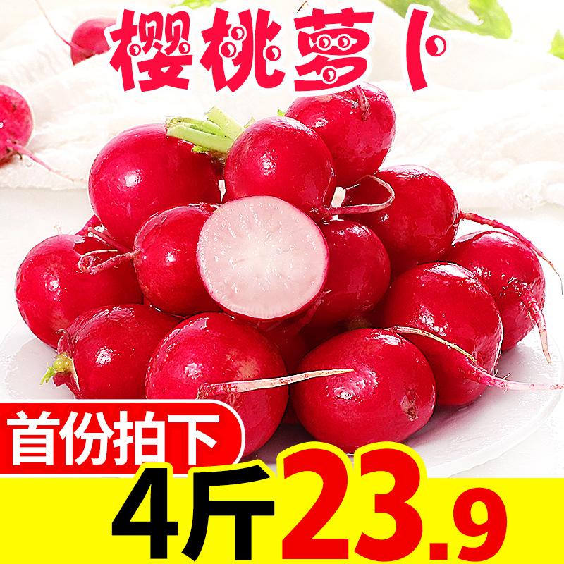 黑龙江樱桃萝卜4斤新鲜水果萝卜特产东北蔬菜包邮当季红萝卜批发