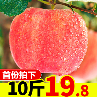 脆甜陕西红富士冰糖心丑苹果整箱 10斤批一箱应季 苹果水果新鲜当季