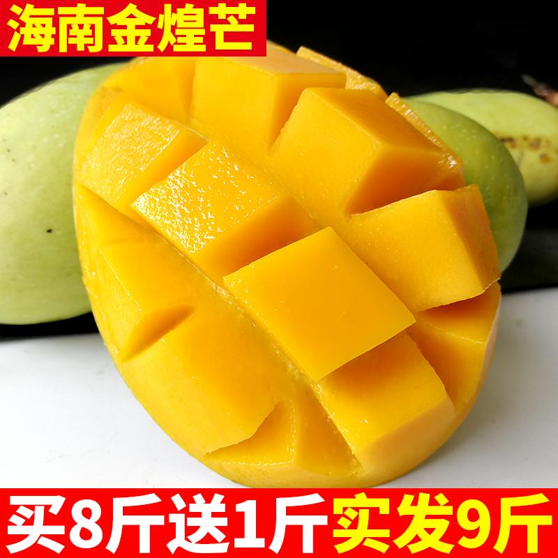 海南小金煌芒果 新�r 包�] 8斤��季水果批�l青芒果整箱 小�_芒果