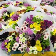 小雏菊鲜花玫瑰花束香水百合云南基地直发家庭水养向日葵同城速递