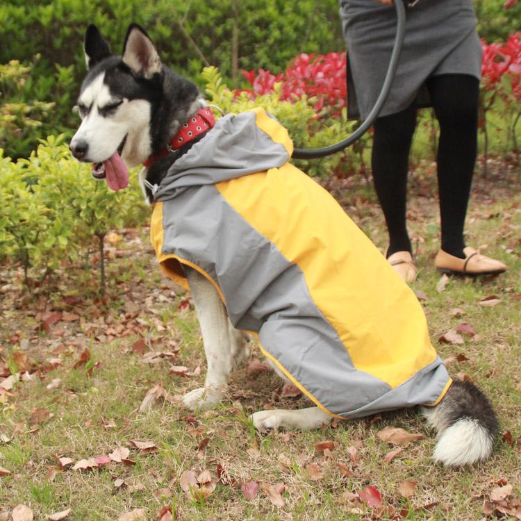 柯基狗狗雨衣大中型犬拉布拉多金毛宠物雨披泰迪八哥两脚装