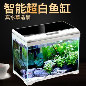 免换水森森超白玻璃热带生态鱼缸