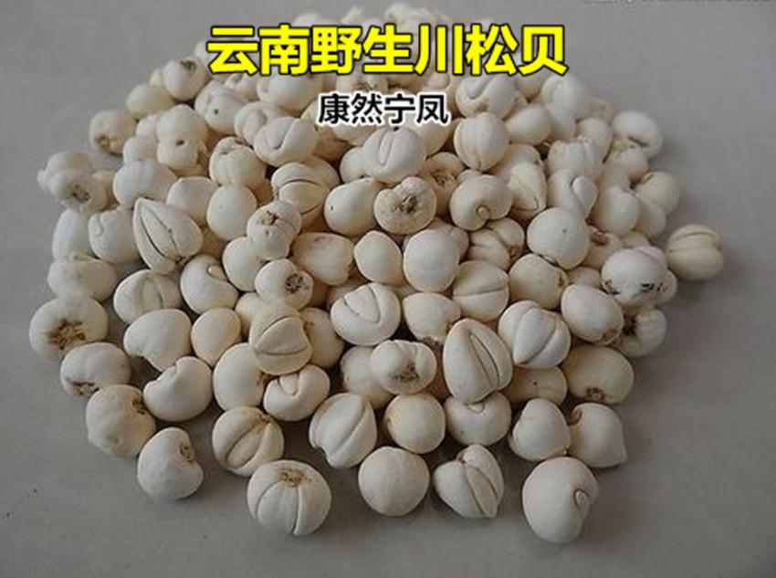 云南野生农家特级川贝母 川贝粉 贝母品质野生松贝正品 50g