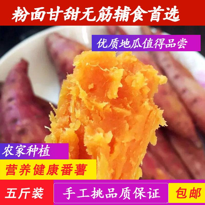 新鲜沙地六鳌密薯农家地瓜大小山芋香薯黄心番薯红苕芋包邮5斤装