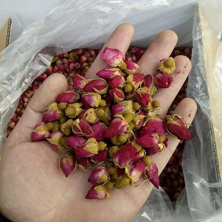 散装特级天然花蕾甘肃特产烘干玫瑰包邮500g兰州特产苦水玫瑰花茶