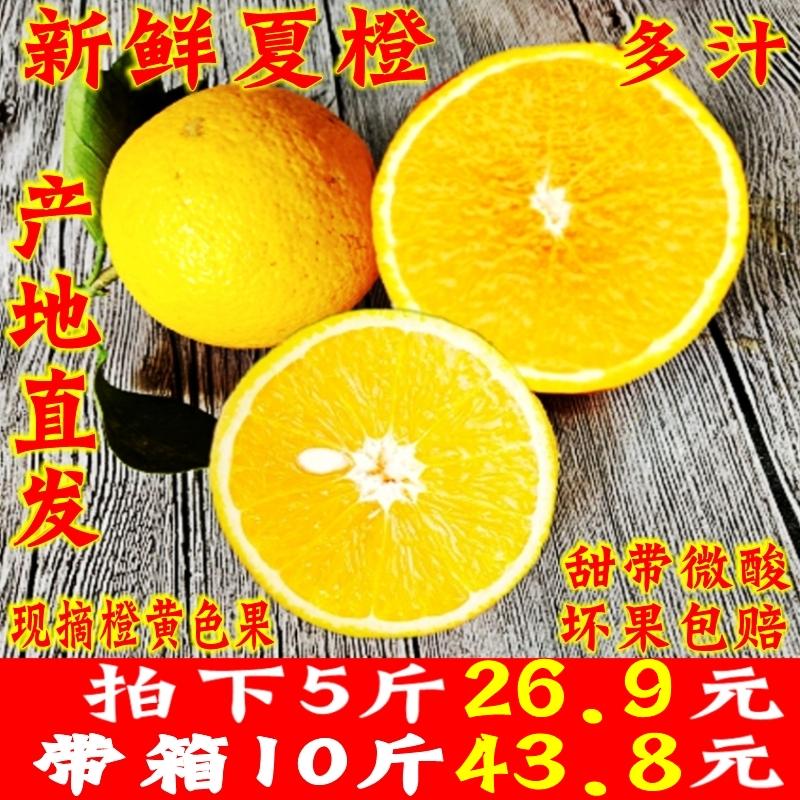 江永夏橙现摘手剥橙伦晚脐橙时令新鲜水果榨汁橙桂林夏橙5斤包邮