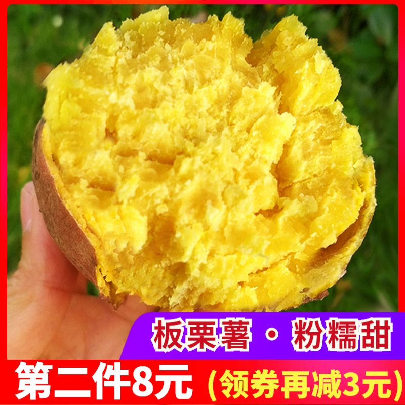 新鲜现挖黄肉番薯鸡蛋黄味粉糯山芋限10000张券