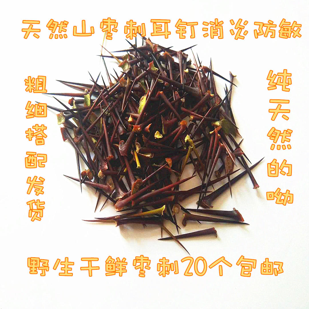 Sour jujube needle mountain jujube thorn needle wild jujube thorn needle ear hole ear hole anti allergy anti-inflammatory ear nail 20 packages