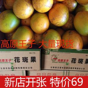 高原王子花斑果橙子新鲜冰糖橙10斤云南褚氏橙时令水果新平哀牢山