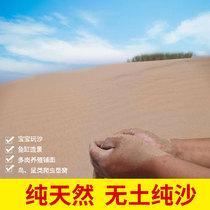 天然沙漠細沙兒童樂園寶寶玩具沙倉鼠浴沙寵物沙魚缸沙滅煙沙9斤