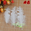 Curly goose / goose feather large natural floating DIY jewelry accessories / bridal headdress feather / craft feather 20