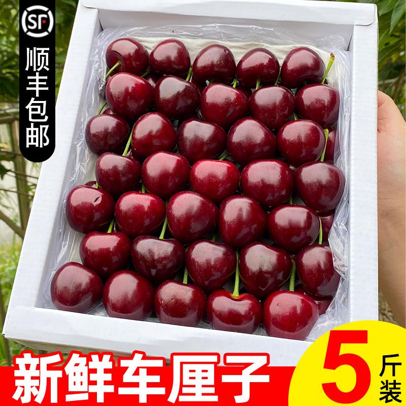 车厘子5斤装新鲜美早烟台大樱桃水果整箱10应季当季山东一箱包邮