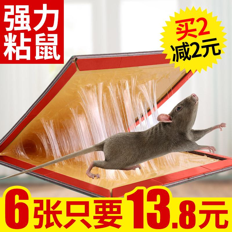 粘鼠板超强力驱老鼠贴6张装