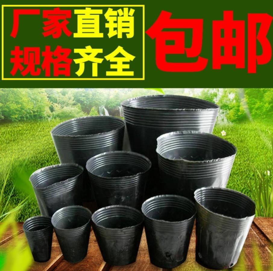 Чаши Артикул 639051840032