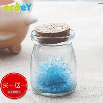 Ecoey Office potted green planting Desktop mini cute planting crystal ecological wish bottle micro landscape DIY