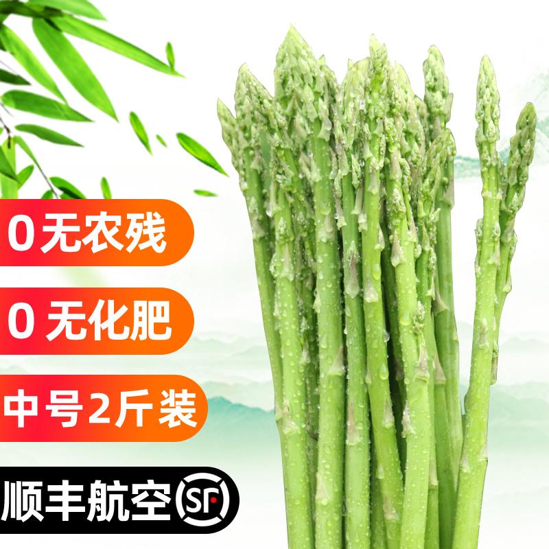 新鲜卢笋农家嫩芦笋中号2斤产地直销时令蔬菜石刁柏青笋顺丰包邮