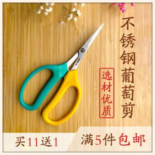 翘头葡萄修果专用剪刀疏果稀果剪花椒采果蔬果剪枇杷橘子采摘修枝