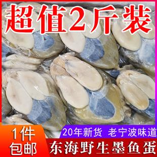 东海野生墨鱼蛋1000g大乌贼蛋目鱼蛋带膏黄 宁波腌制水产海鲜包邮