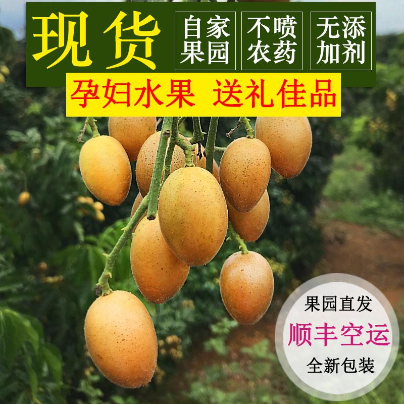 广东当季新鲜鸡心黄皮果送礼佳品 孕妇水果 5斤顺丰空运包邮