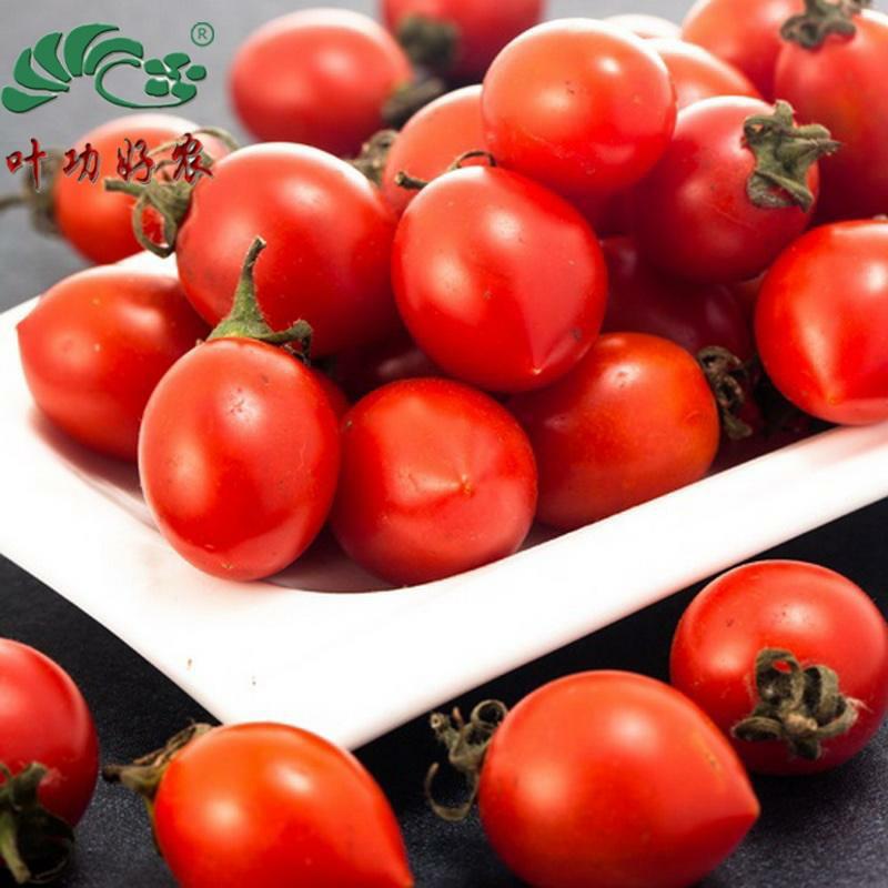 新鲜小西红柿 樱桃番茄 水果小柿子 红色圣女果 樱桃西红柿 500g