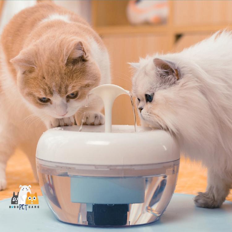 美国酷极PAWOOF宠物猫咪狗狗智能自动过滤循环饮水机猫碗狗碗水碗
