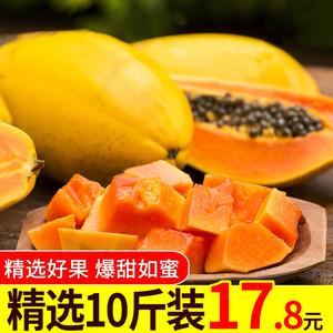 海南红心甜木瓜10斤牛奶冰糖心青木瓜树上熟整箱新鲜水果包邮批发