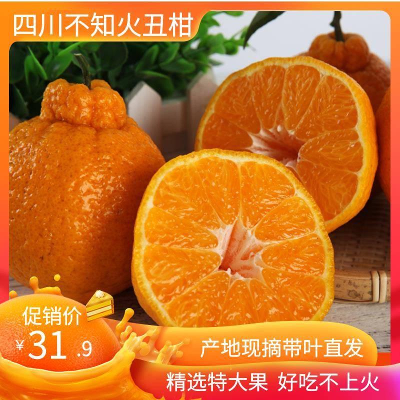 四川不知火丑橘丑桔耙耙丑八怪新鲜水果现摘10斤装礼盒孕妇水果