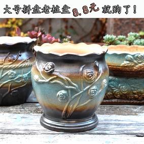 多肉个性手绘法师老桩拼盘陶瓷花盆