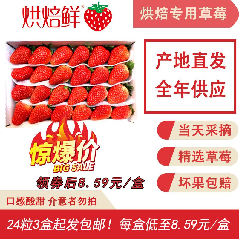 烘焙鲜新鲜酸甜草莓非丹东包邮水果商用双流云城蛋糕奶茶店2/3盒
