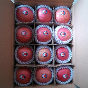 正宗陕西延安洛川红富士苹果水果10斤新鲜脆甜冰糖心一级当季包邮