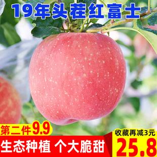 现货19年头茬红富士苹果新鲜水果脆甜不打蜡孕妇当季 苹果带箱5斤