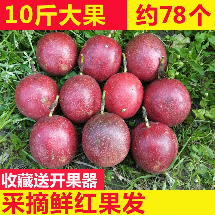 现摘现发广西百香果10斤新鲜西蕃莲