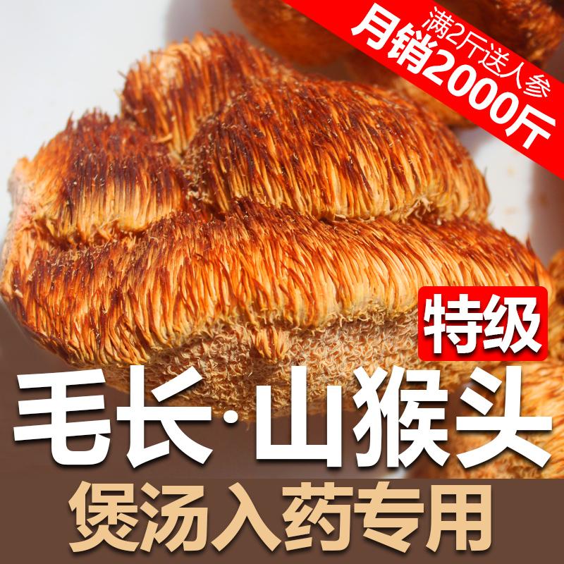 猴头菇干货新东北野生可打粉纯特级 500g 一级长白山猴头菇