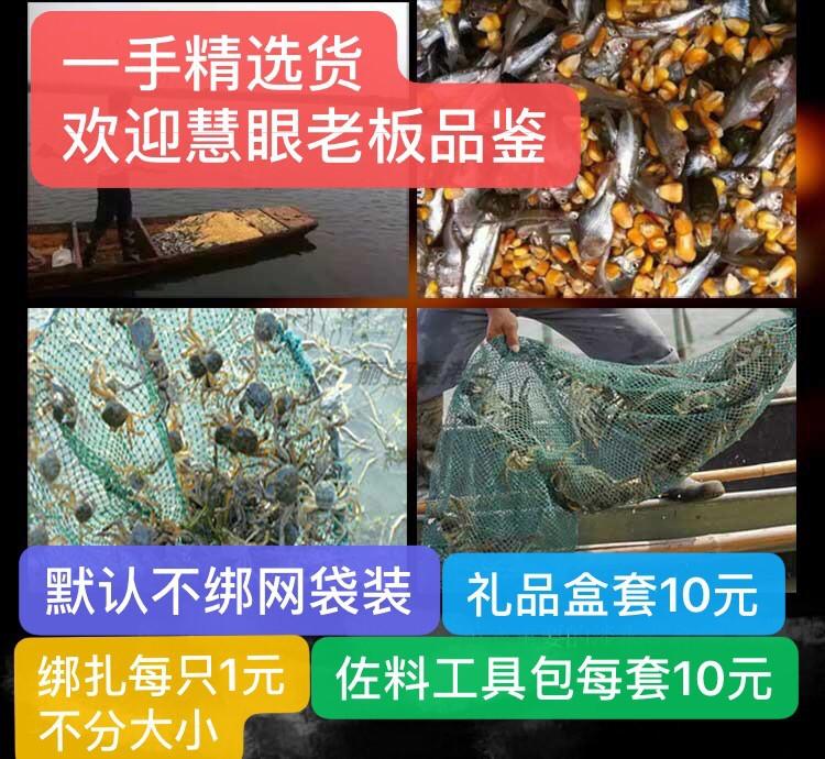 螃蟹零食3.5公满2斤包邮3.0-3.5两全公蟹重庆现货江苏红膏大闸蟹