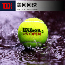 Wilson Tennis Genuine Beauty net Australian Open competition with Tennis Wilson practice Ball professional Training ball Ultra