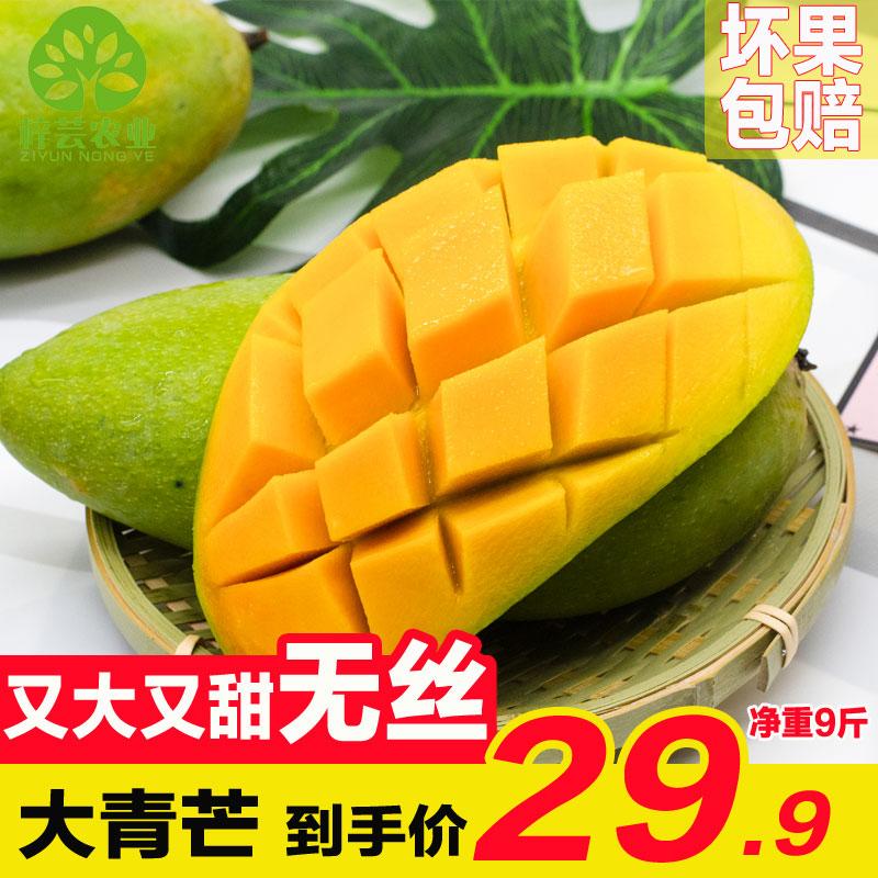 新鲜水果整箱10芒果超大青皮芒大芒果青皮金煌芒大青芒净果9斤