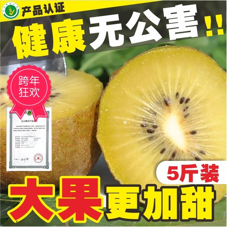 四川蒲江黄心猕猴桃奇异果大果特大果新鲜水果5斤非浦江苍溪红心