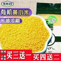 北纬49东北2020新有机黄小米月子宝宝小黄米杂粮粥糯优质400g