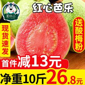 王小二 红心芭乐水果新鲜包邮当季番石榴整箱芭乐果应季批发10斤