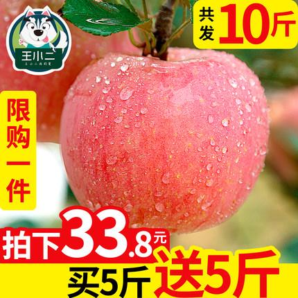 【买一送一】红富士苹果水果10斤新鲜包邮当季丑苹果整箱吃的平果