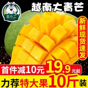 越南大青芒10斤新鲜包邮当季大芒果
