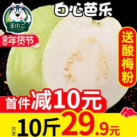 王小二 白心芭乐果新鲜包邮水果当季大应季整箱白肉番石榴甜10斤图片