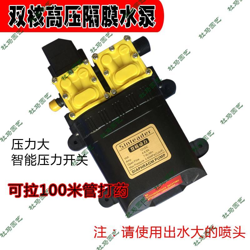 Сельское хозяйство использование 12V большой мощности двухъядерный мощность насос электрический спрей устройство умный двойной насос высокое давление мыть борьба медицина насос