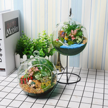 Moss Micro landscape Ecological bottle Creative potted Moss Bonsai Mini green planting Desk Pendant glass sling