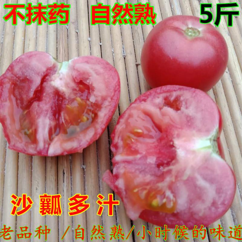 番茄山东农家西红柿新鲜沙瓤自然熟有机5斤天然蔬菜水果农产品