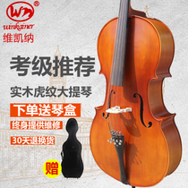 Vera all solid wood handmade beginner adult band playing cello delivery gift box Childrens musical instruments