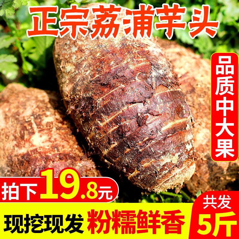 广西荔浦芋头芳香正宗芋艿头10斤芋头新鲜荔浦特大香芋一级食品