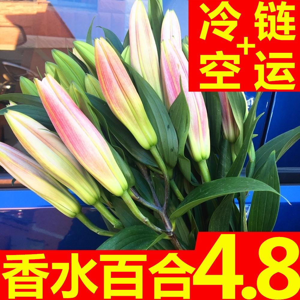鲜花云南直发昆明助农基地香水水养百合同城速递家用玫瑰花束直批